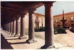BRAGA - Colunas E Jardim Do Paço - PORTUGAL - Braga