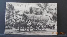 CPA - Ceylan - Colombo - Double Bullock Cart With Full Load - Sri Lanka (Ceylon)