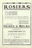 Publicité Papier ROSIERS GEMEN & BOURG LUXEMBOURG Décembre 1905 JSP1043852 - Werbung
