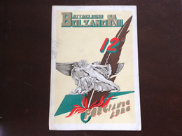 REGGIMENTO 12o BATTAGLIONE ALPINI BOLZANO - Cartolina FG V 1936 - Regiments