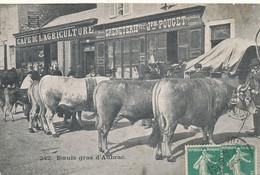 AT 602 /  C P A    AUBRAC  (12)   BOEUFS GRAS D'AUBRAC - Altri Comuni