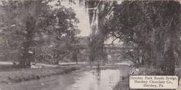 Pennsylvania Hershey Rustic Bridge In Hershey Park Hershey Chocolate Company 1911 - Other