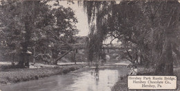 Pennsylvania Hershey Rustic Bridge In Hershey Park Hershey Chocolate Company 1910 - Other