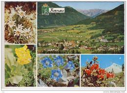 TURNAU - Panorama, Luftansicht, Aerial View, Alpenblumen, - Otros
