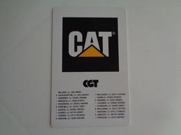 Cat Italy Pocket Calendar 1990 - Small : 1981-90