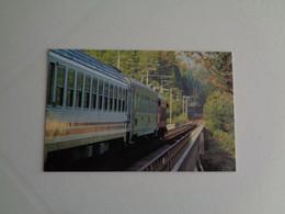 Train Syndicate Portugal Portuguese Pocket Calendar 2008 - Small : 2001-...
