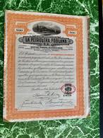 LA  PETROLERA  POBLANA  S.A.  ---------------- Certificat  De  500 Actions  D' Un  Peso - Oil