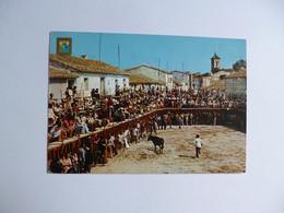 BENICASIM  -  Castellon  -  Fiestas Tipicas   -  ESPAGNE - Castellón