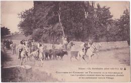 30. NIMES. Coutumes Et Courses De Taureaux à La Provençale. Les Cavaliers Cernent Alors Les Taureaux Choisis... - Nîmes