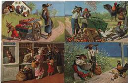 Série N° 856 , 6 Cartes Lapins  Habillés - Dressed Animals