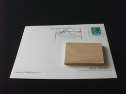 Cartolina Postale V° MOSTRA FILATELICA NUMISMATICA VILLA ADA TERME DI BAGNI DI LUCCA - Beursen Voor Verzamellars