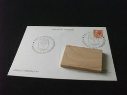 Cartolina Postale 1° MOSTRA FILATELICA NUMISMATICA ALTOPASCIO LUCCA 1981 1° CENTENARIO DEL COMUNE - Beursen Voor Verzamellars