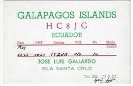 QSL Card - Galapagos Islands - Isla Santa Cruz - Ecuador - H7745 - Radio Amateur