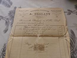 13/9. 17 - Facture , Etablissements D'Horticulture Et De Viticulture A.Herlaut, Avenue De La Gare, MIRANDE, Gers, 1895 - Agricoltura
