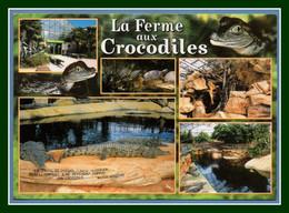 CM Pierrelatte La Ferme Aux Crocodiles Voy Scan Verso - Altri Comuni