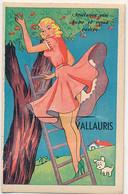 VALLAURIS - CARTE A SYSTEME (AVEC DEPLIANT) - Vallauris