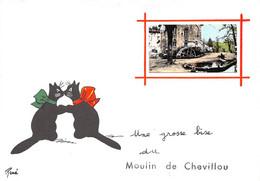 87-SAINT-GENCE- MOULIN DE CHEVILLOU- UNE GROSSE BISE DU MOULIN DE CHEVILLOU - Autres Communes
