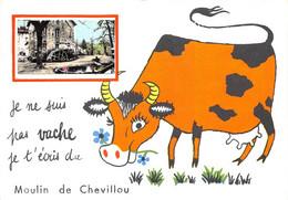 87-SAINT-GENCE- MOULIN DE CHEVILLOU-JE NE SUIS PAS VACHE JE T'ECRIS DU MOULIN DE CHEVILLOU - Autres Communes