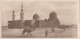 Egypte - Cairo Le Caire - Tombs Of The Khalifs - Editeur The Cairo Postcard Trust - Cairo
