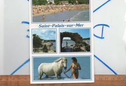 SAINT ST PALAIS SUR MER Charente Maritime : Plage Femme Nudiste Nue Seins Nus Et Cheval Nude Breast Woman Akt Frau - Saint-Palais-sur-Mer