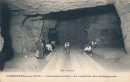 Carrières Sous Bois (78 Yvelines) Cave Champignonnière La Cueillette Des Champignons De Paris - édit Ferrières Circ 1934 - Carrieres Sous Poissy