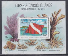Turks Et Caiques BF N° 34 XX  La Plongée Sous-marine,  Le Bloc Sans Charnière, TB - Turks- En Caicoseilanden