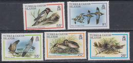 Turks Et Caiques N° 481 / 85 XX Faune : Oiseaux Migrateurs, La Série Des 5 Valeurs Sans Charnière, TB - Turks- En Caicoseilanden