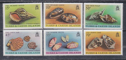 Turks Et Caiques N° 488 / 93 XX Faune Marine : Coquillages Divers, La Série Des 6 Valeurs Sans Charnière, TB - Turks- En Caicoseilanden