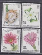 Turks Et Caiques N° 523 / 26 XX Flore : Cactus à Fleurs, La Série Des 4 Valeurs Sans Charnière, TB - Turks- En Caicoseilanden