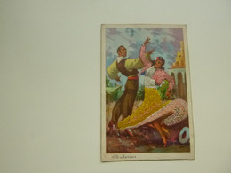 Carte ( 2220 )  Brodée  Geborduurde Kaart  Flamingo  Espagnol  Espagne  Spanje - Embroidered