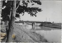 VIAS  LE PONT SUR LE CANAL DU MIDI  CARTE TRES RARE ANNEE 1958 - Unclassified