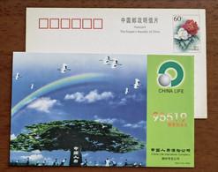 Red-crowned Crane Bird,rainbow,China 2002 China Life Insurance Company Shengzhou Branch Advertising Pre-stamped Card - Kraanvogels En Kraanvogelachtigen