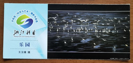 Beach Seagull Bird,Awarding Artwork Of Photography Competition,CN 11 Zhejiang Science And Technology Popularization PSC - Meeuwen