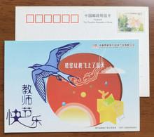 Sea Bird,China 2007 Chengdu Business Daily Teacher's Day Greeting Pre-stamped Card - Meeuwen