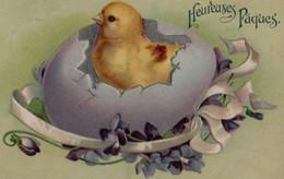 Belle Illustrée Gaufrée : Poussin Sortant D'un Oeuf Mauve . Violettes . JOYEUSES PAQUES - Ostern