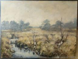 Lande (Astense Peel), Toon Vd Broek/ Heathland (Astense Peel), Toon Vd Broek - Olii
