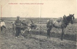 CPA Guerande Dans La Plaine Scèhe De Labourage - Guérande