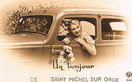 91  UN BONJOUR   DE   SAINT  MICHEL  SUR  ORGE      CPM  TBE   1172 - Saint Michel Sur Orge