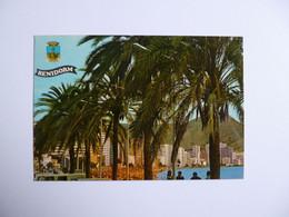 BENIDORM -  Alicante  -  Playas De Levante    -   ESPAGNE - Alicante