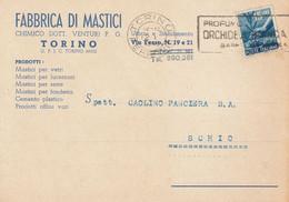 Piemonte - Torino - Fabbrica Di Mastici - Chimico Dott. Venturi P.G. - - Exhibitions
