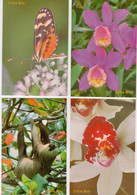 Costa Rica 4 Postal Cards Butterfly Orquids Overprinted 240 Colones EXPO FILA 2006 CRR&PS #367 - Costa Rica