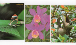 Costa Rica 6 Postal Cards Butterfly Orquid Crab Sloath Postage Paid Overprinted 240 Colones  #370 - Costa Rica