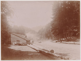Photo Originale Ancienne Sur Albuminé - Environs De Plombières  - 17 X 22,5 Cm - Places