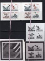 21/9 7/4 Estonie EEsti Estonia Carnet Booklet + Epreuve N/B MNH XX Canards Duck Aigle Eagle Cormoran - Colecciones (sin álbumes)