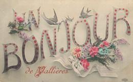 H2509 - BONJOUR De VALLIERES - D74 - Other Municipalities
