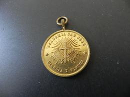 Medalla Argentina - Academia San José - Reguerdo Del XXV. Anniversario - 1893 - Unclassified