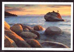 AK 000563 USA  - Nevada - Zwergbäume Auf Dem Bonsqai Rock Am Lake Tahoe - Other