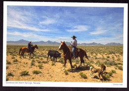 AK 000564 USA  - Nevada - Cowboys Bei Warm Springs - Other