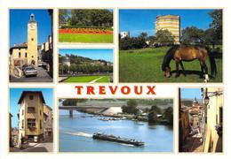 01 - Trévoux - Multivues - Trévoux