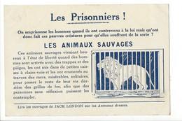 28664  - Les Prisonniers Les Animaux Sauvages Protection Des Animaux Sauvages - Lions